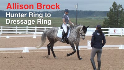 Instant Access to Allison Brock - Hunter Ring to Dressage Ring by Dressage Today Online, powered by Intelivideo