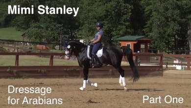 Mimi Stanley - Dressage for Arabians - Part 1 by Dressage Today Online