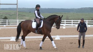Instant Access to Allison Brock - More Bend by Dressage Today Online, powered by Intelivideo