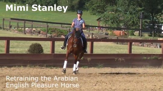 Instant Access to Mimi Stanley - Retraining the Arabian English Pleasure Horse by Dressage Today Online, powered by Intelivideo