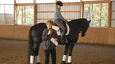 Review of training scale, basic gait requirements, comparison of required collection for various levels by Dressage Today Online
