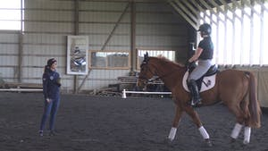 Kasey Perry - Leg Yields and Roundness by Dressage Today Online