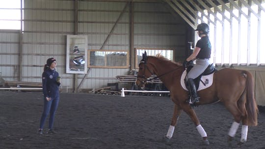 Instant Access to Kasey Perry - Leg Yields and Roundness by Dressage Today Online, powered by Intelivideo
