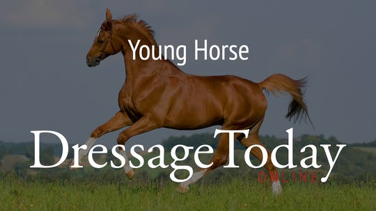 Young Horse by Dressage Today Online