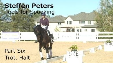 Steffen Peters - Tools for Spooking - Part 6 - Trot, Halt by Dressage Today Online