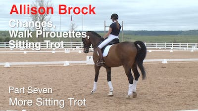 Instant Access to Allison Brock - Third Level Work, Part 7 by Dressage Today Online, powered by Intelivideo