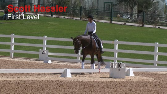 Scott Hassler - First Level by Dressage Today Online