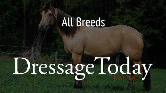 All Breeds by Dressage Today Online