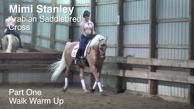 Mimi Stanley - Arabian Saddlebred Cross - Part One - Walk Warm Up by Dressage Today Online