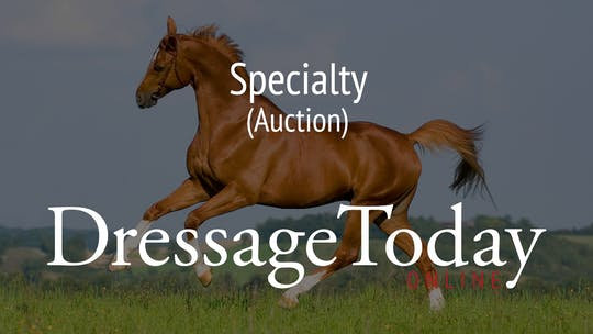 Auction by Dressage Today Online