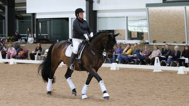 Janet Foy - 2019 Fourth Level, Test 2 by Dressage Today Online