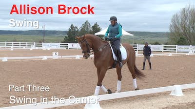 Allison Brock - Swing, Part 3 - Canter by Dressage Today Online