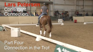Lars Petersen - Consistent Connection, Part 4 by Dressage Today Online