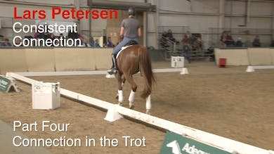 Lars Petersen - Consistent Connection - Part Four - Connection in the Trot by Dressage Today Online