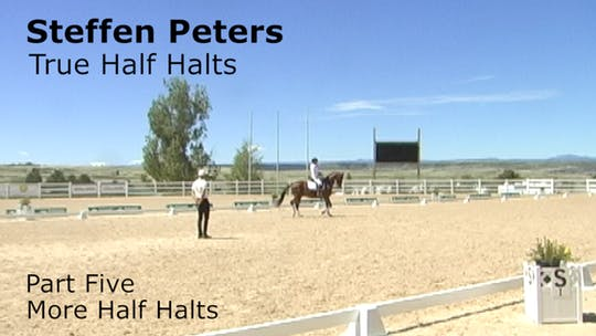 Instant Access to Steffen Peters - True Half Halts - Part Five - More Half Halts by Dressage Today Online, powered by Intelivideo