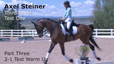 Axel Steiner - Third Level Test 1, Part 3 by Dressage Today Online
