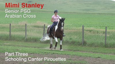 Mimi Stanley - Senior PSG Arabian Cross, Part 3 - Schooling Canter Pirouettes by Dressage Today Online
