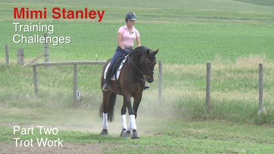 Instant Access to Mimi Stanley - Training Challenges, Part 2 by Dressage Today Online, powered by Intelivideo