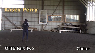 Kasey Perry-Glass - OTTB - Part Two - Canter by Dressage Today Online