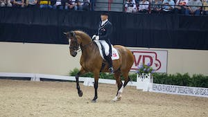 Lars Petersen - Engaged and Supple by Dressage Today Online