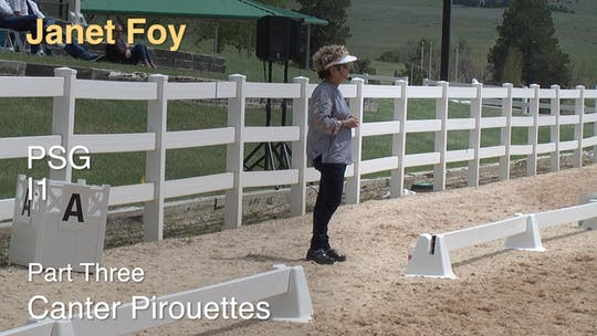 Instant Access to Janet Foy - PSG I1 - Part Three - Canter Pirouettes by Dressage Today Online, powered by Intelivideo