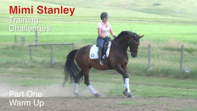 Mimi Stanley - Training Challenges, Part 1 by Dressage Today Online
