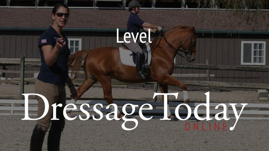 Level by Dressage Today Online