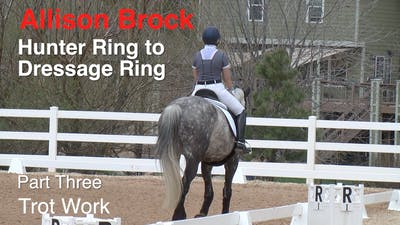 Instant Access to Allison Brock - Hunter Ring to Dressage Ring - Part Three - Trot Work by Dressage Today Online, powered by Intelivideo