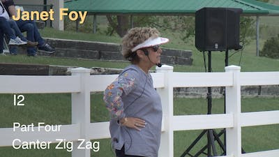 Instant Access to Janet Foy - Intermediate II, Part 4 - Canter Zig Zag by Dressage Today Online, powered by Intelivideo
