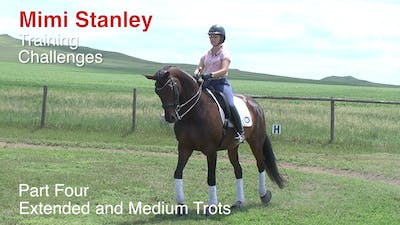 Instant Access to Mimi Stanley - Training Challenges, Part 4 by Dressage Today Online, powered by Intelivideo