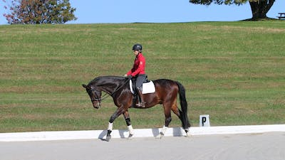 Felicitas von Neumann-Cosel - Training Scale, Relaxation, Part 4 by Dressage Today Online