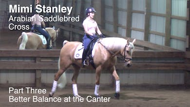Mimi Stanley - Arabian Saddlebred Cross - Part Three - Better Balance at the Canter by Dressage Today Online