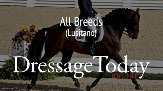 Lusitano by Dressage Today Online
