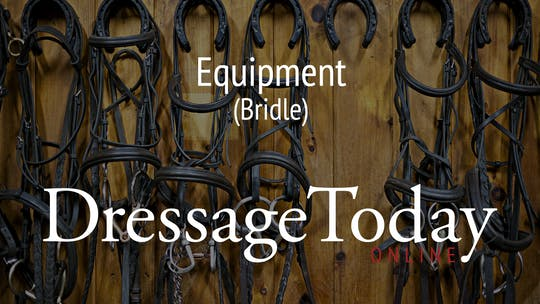 Double Bridle by Dressage Today Online
