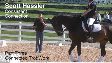 Scott Hassler - Consistent Connection - Part Three - Connected Trot Work by Dressage Today Online