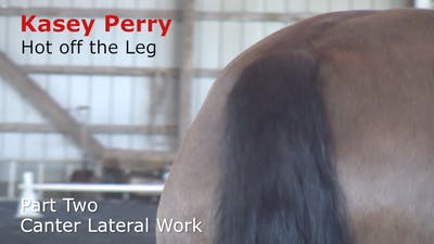 Instant Access to Kasey Perry-Glass - Hot Off the Leg, Part 2 - Canter Lateral Work by Dressage Today Online, powered by Intelivideo