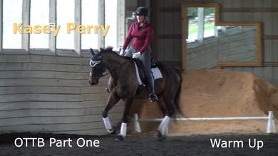 Kasey Perry-Glass - OTTB - Part One - Warm Up by Dressage Today Online