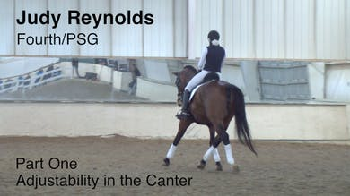 Judy Reynolds - Fourth/PSG - Part One - Adjustability In the Canter by Dressage Today Online