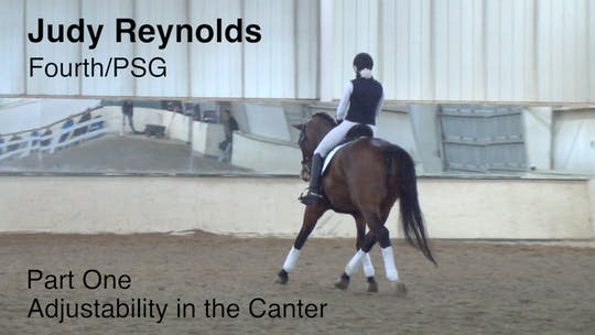 Instant Access to Judy Reynolds - Fourth/PSG - Part One - Adjustability In the Canter by Dressage Today Online, powered by Intelivideo