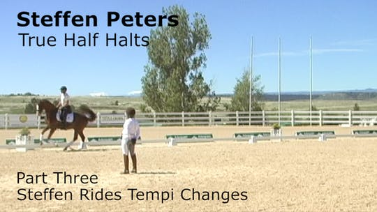 Instant Access to Steffen Peters - True Half Halts - Part Three - Steffen Rides Tempi Changes by Dressage Today Online, powered by Intelivideo