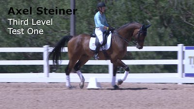 Axel Steiner - Third Level Test 1 Intro by Dressage Today Online
