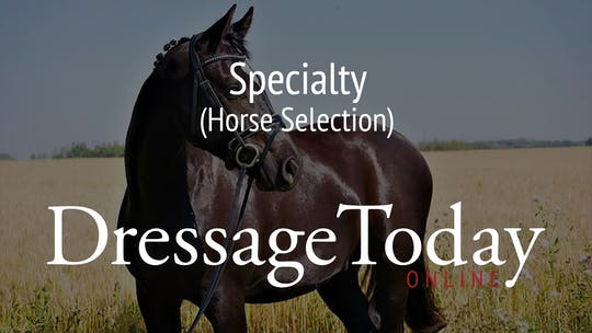 Horse Selection by Dressage Today Online