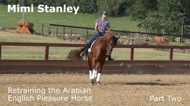 Mimi Stanley - Retraining the Arabian English Pleasure Horse - Part Two by Dressage Today Online