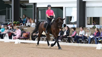 Janet Foy - 2019 Fourth Level Overview by Dressage Today Online