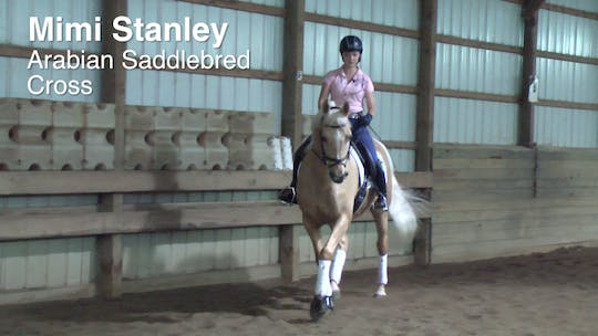 Mimi Stanley - Arabian Saddlebred Cross by Dressage Today Online, powered by Intelivideo