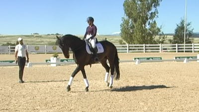 Steffen Peters - Tools for Spooking by Dressage Today Online, powered by Intelivideo