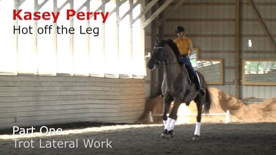 Instant Access to Kasey Perry-Glass - Hot Off the Leg, Part 1 - Trot Lateral Work by Dressage Today Online, powered by Intelivideo