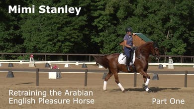 Mimi Stanley - Retraining the Arabian English Pleasure Horse - Part One by Dressage Today Online
