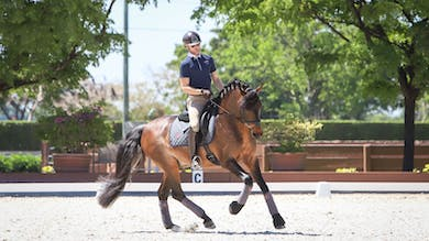Nicholas Fyffe - Cross-Training for Horse and Rider, Part 2 by Dressage Today Online