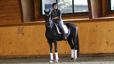 Steffen Peters and Scott Hassler - Day 2, Fourth Level by Dressage Today Online